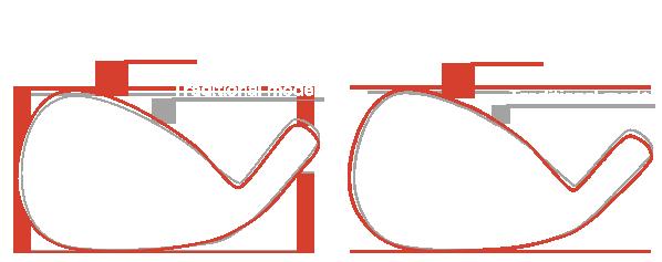 W106:Head size comparison